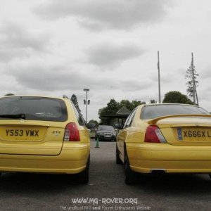 Yellow Behinds